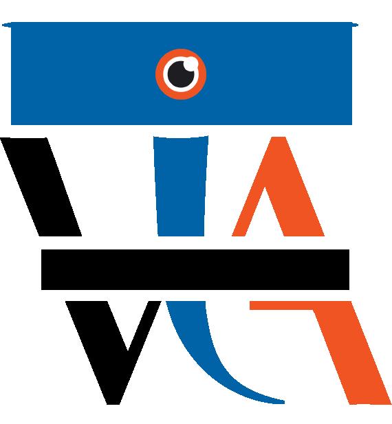 VIA Drone